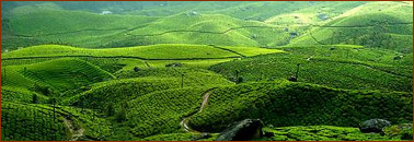 Kerala Hill Station Travel Package