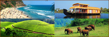 Best of Kerala Travel Package